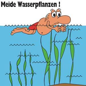 Meide Wasserpflanzen!